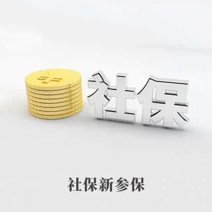 社保新参保(首人参保)45159271260733450