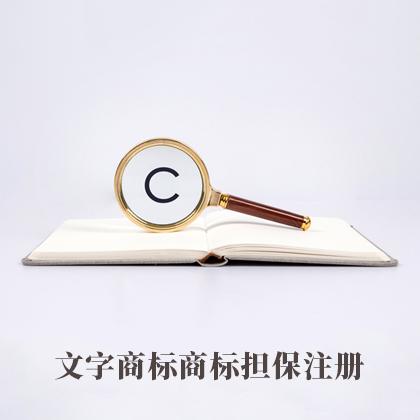 文字商标商标担保注册(默认)78600297362318750