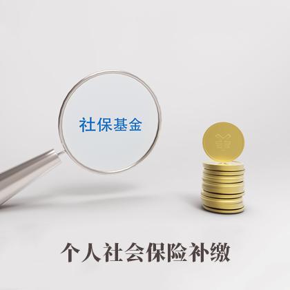 个人社会保险补缴(一个月)17680964404555088