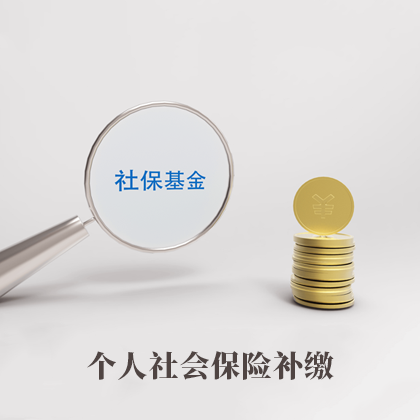 个人社会保险补缴(一个月)29888915513134460